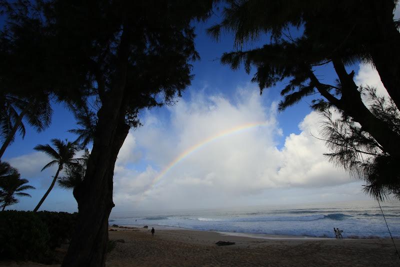 Hawaiian winter january 2017