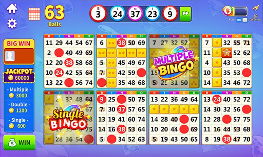 Bingo: Lucky Bingo Games Free to Play at Home apkmr screenshots 7