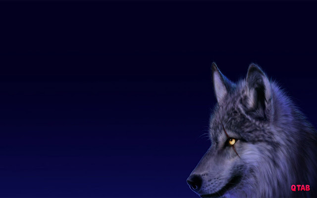 Wolf Wallpaper for New Tab