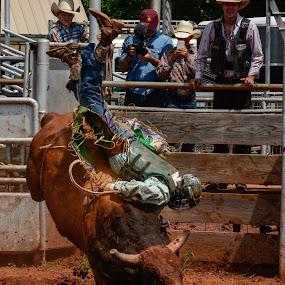 Feet Up Head Down by Eva Ryan - Sports & Fitness Rodeo/Bull Riding ( cowboy, oklahoma, rodeo, kingfisher ok, bull riding,  )