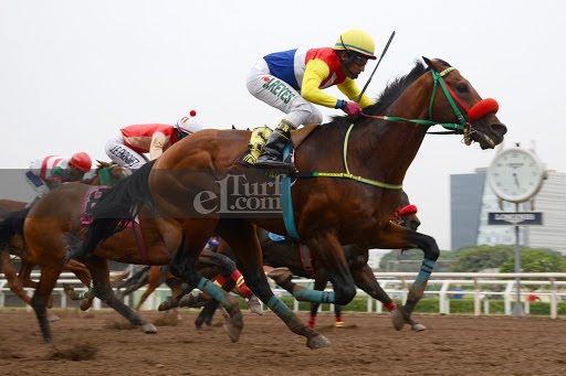 Wash (Pegasus Wind) gana Handicap (1000m-Arena-MONT).
