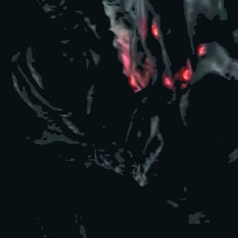 深淵の主マヌス