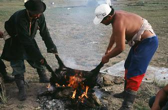 Photo: 03341 ナムジ家/ヤギ石焼料理準備/ボードック/首から下の皮を筒状に剥いだ中に解体した肉と焼石を詰めもどして、外側から火で焼く