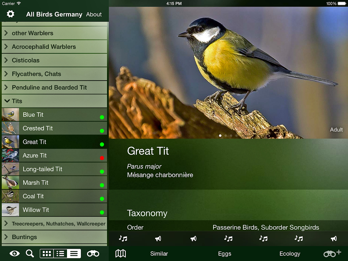 all birds germany android apps on google play