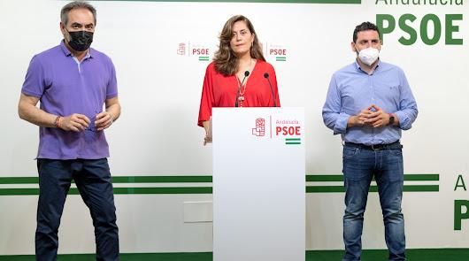 """Caso Mascarillas: PSOE denuncia que PP """"oculta"""" nuevos requerimientos judiciales"""