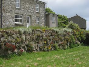 Photo: ... and Cornish walls abound.