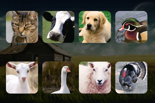 Farm Animal Sounds Learn