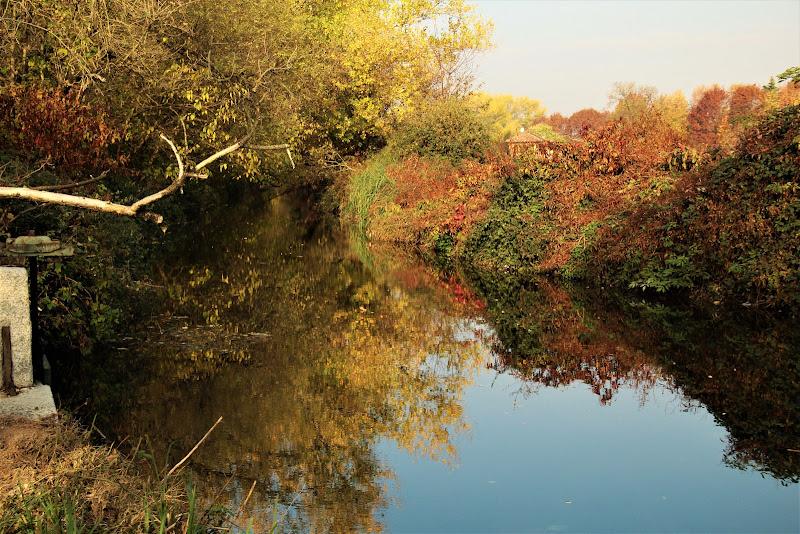 L'autunno di Gp