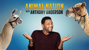 Animal Nation With Anthony Anderson thumbnail