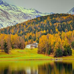 174 25 Oct 2014 Best of Soglio  Lake Sils Diavolezza St Moritz Lake.jpg