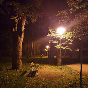 Nocturne by Oliver Švob - Instagram & Mobile Android ( night picture, bench, park, nocturne, croatia, snapshot by malioli, night, , Lighting, moods, mood lighting, public, furniture, object )