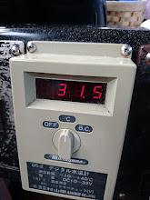 Photo: 水温31.5度! ひえーっ!