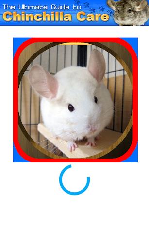 免費下載醫療APP|Chinchilla Care app開箱文|APP開箱王
