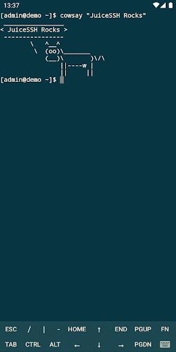 JuiceSSH - SSH Client screenshot 7