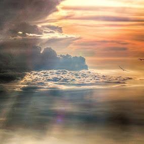 Heavenly Sky by Miko Adji - Landscapes Cloud Formations ( cloud formations, orange, sky, skyscraper, indonesia, sunset, cloud, golden hour,  )