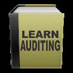 Auditing 1.0