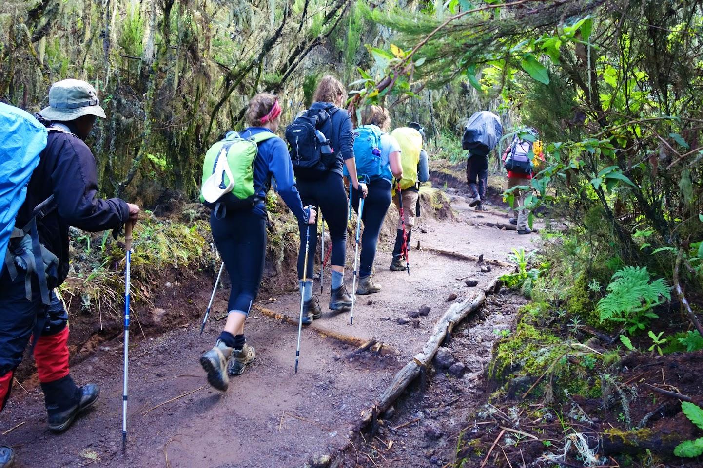 Килиманджаро 06-15.02.2016
