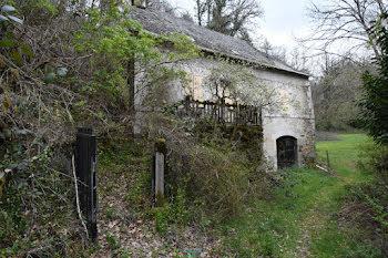 moulin à Menet (15)