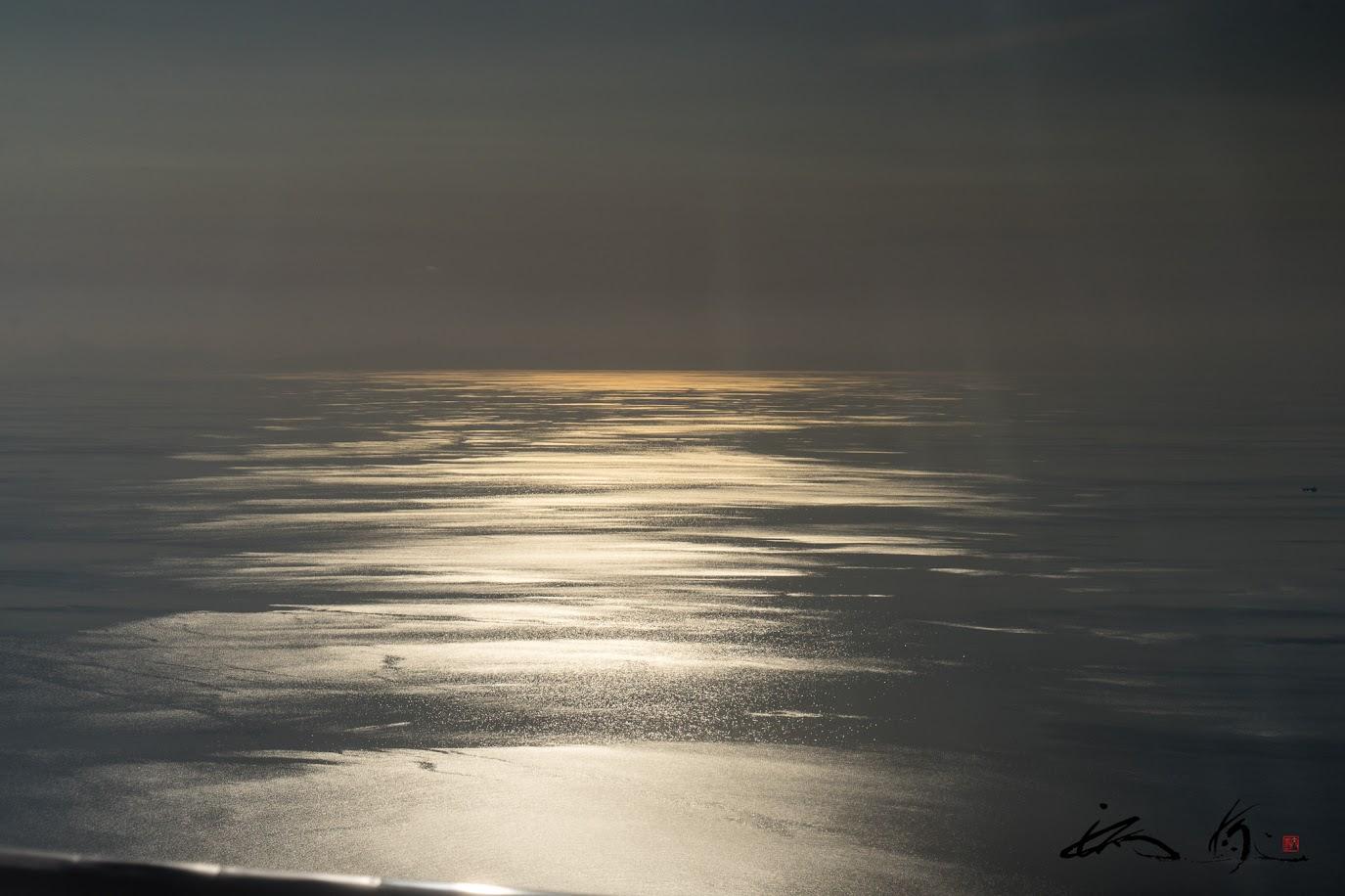 金箔の光の道