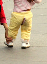Photo: Day 190 -  All the Babies Wear These Open Crotch Trousers