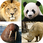 Animals Quiz - Learn All Mammals, Birds and more! icon
