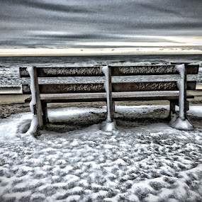 I Saved a Seat for You by Raymond Paul - City,  Street & Park  Street Scenes ( waves, shore, winter, united states, ice, cold, east coast, alone, ocean, snow, beach, delaware, atlantic ocean, quiet, lonely, bethany beach, us )