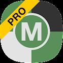 Team Moto Pro 2017