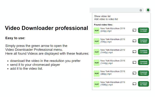 Downloader for Chrome