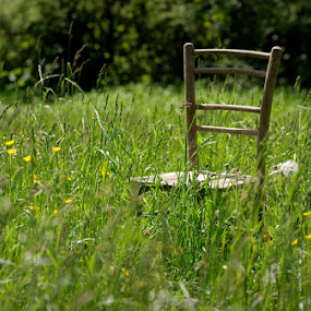 alone and lost II. by Donat Piber - Artistic Objects Furniture ( field, chair, grass )