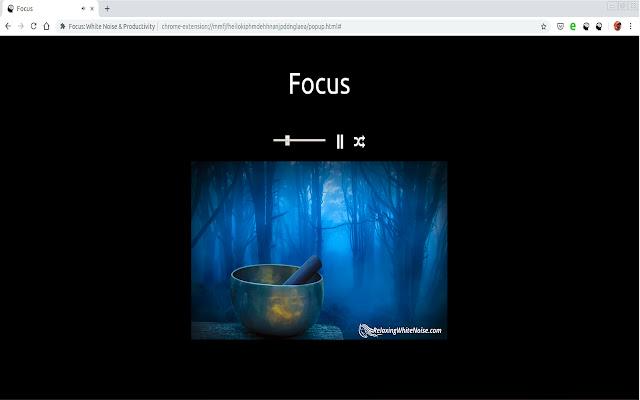 Focus: White Noise & Productivity