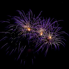 by Joe Permenter - Public Holidays July 4th ( holiday, outdoors, fireworks, 4th of july, independance day,  )