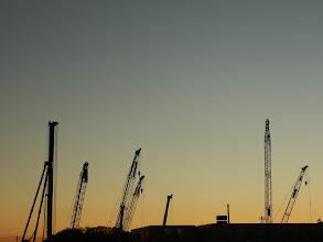 Photo: キリンの群れと夕焼け