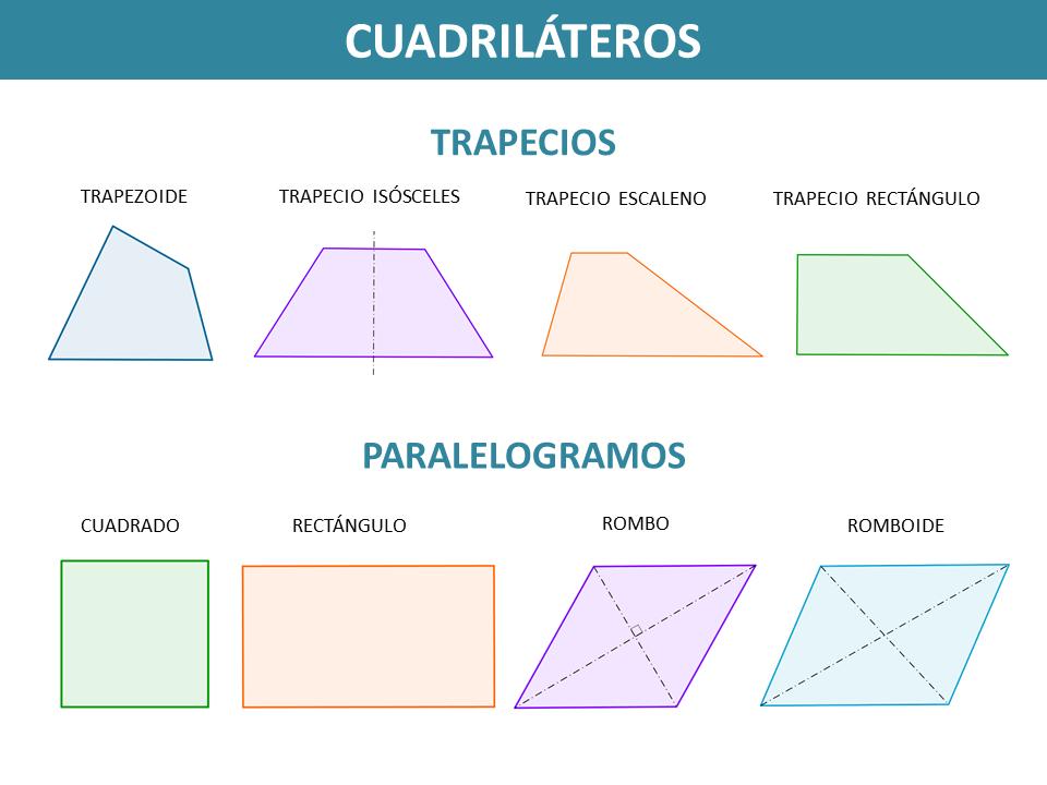 Lneas poligonales y polgonos Tipos de polgonos Tringulos