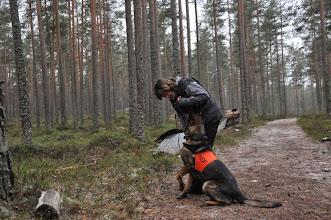 Photo: Kari og Ulvehiets Ailo er klare til å rundere