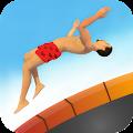 Flip Master Diving Game