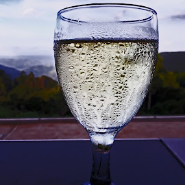 Glass of White Wine by Elna Geringer - Food & Drink Alcohol & Drinks