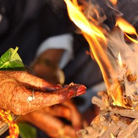 Offering by Ashwin Jain - Wedding Bride ( hand, offering, bride, sacred, fire )