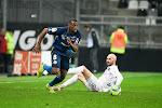 'Zulte Waregem huurt winger van Stade Reims'