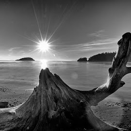 Sunset at Deception Pass over Driftwood by JR Hudson | Scenic Edge - Black & White Landscapes ( landscapes, deception pass, seascape, seascapes, scenic edge photography, sunset, monochromatic, landscape )