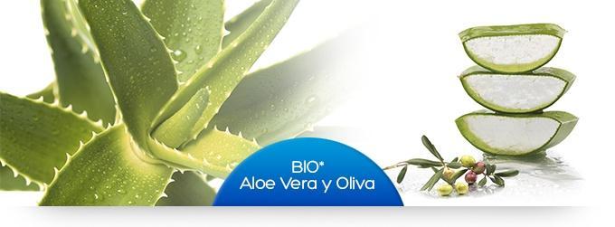 aloe_vera_ESP