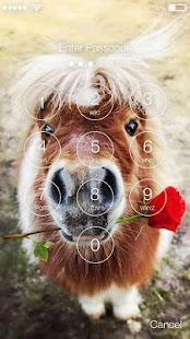 Pony Horse Animal Screen Lock - náhled