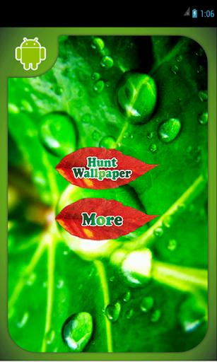 Green Natrure wallpaper