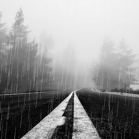 by Marianna Sklia - Black & White Landscapes (  )