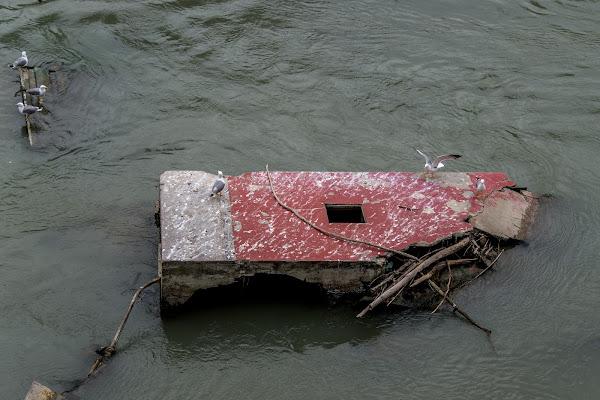 Un fiume degradato di si