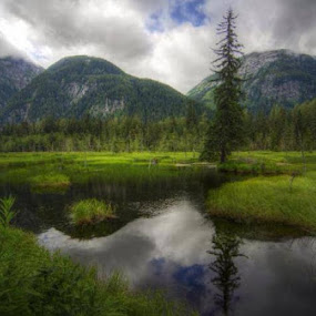 Moose Pond, Hyder, Alaska by Martha Irvin - Landscapes Mountains & Hills (  )