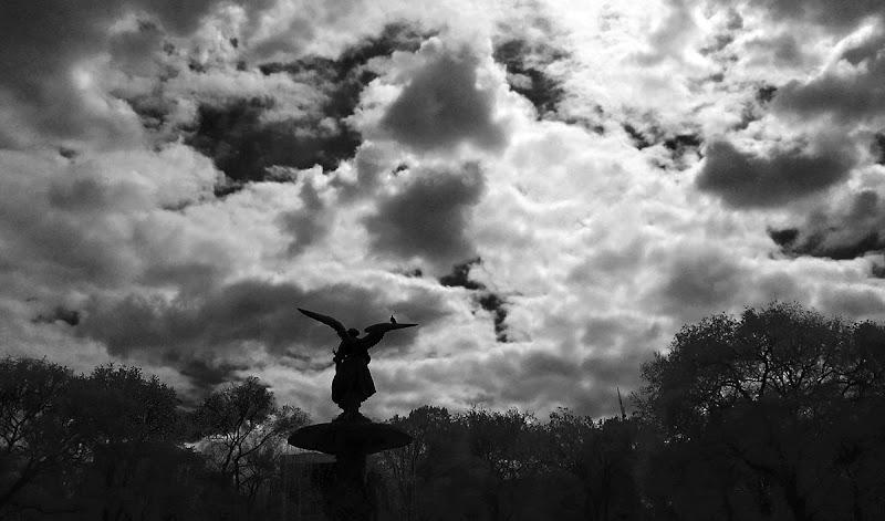 Photo: Bethesda Angel Silhouette2