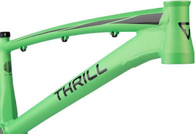 Thrill BMX Cruiser Pro XL Frame alternate image 8