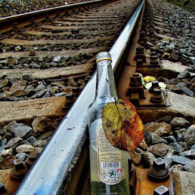 by Karel Šula - Food & Drink Alcohol & Drinks ( drink )