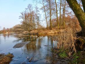 Photo: 0,0 km Ujście Rawki do Bzury (naprzeciw wsi Patoki). Spływ można zakończyć po lewej stronie zaraz przy ujściu Rawki, czyli na prawym brzegu Bzury. Dogodne miejsce,piaszczysta plażyczka (łatwy dojazd z transportem przez most w Kęszycach). Wycieczkę można wydłużyć i dopłynąć z nurtem Bzury do pierwszego mostu w Kozłowie Szlacheckim