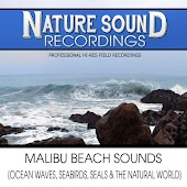 Malibu Beach Sounds (Ocean Waves, Seabirds, Seals & The Natural World)